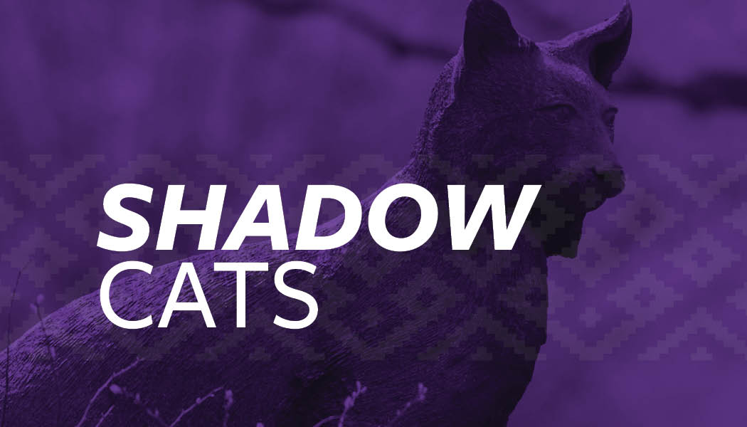 "A photo of the catamount statue with the text ""Shadow Cats"" over it."